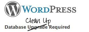 WordPress Clean Up